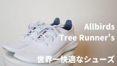 【他の靴が履けなくなる!?】Allbirdsツリーランナーを写真付きでレビュー
